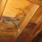 sheathing-damage-due-to-leaks